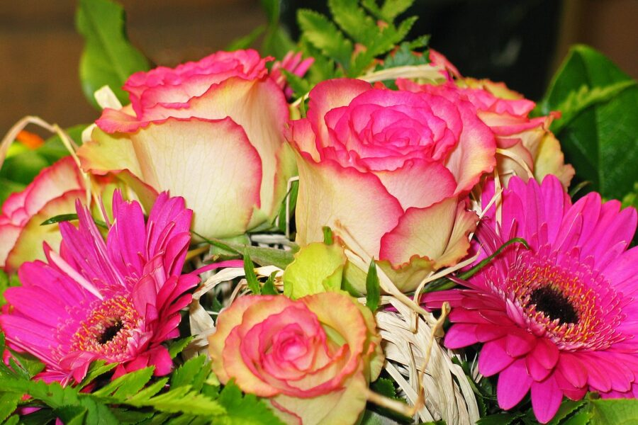 A super sweet article on flowers for Valentines.